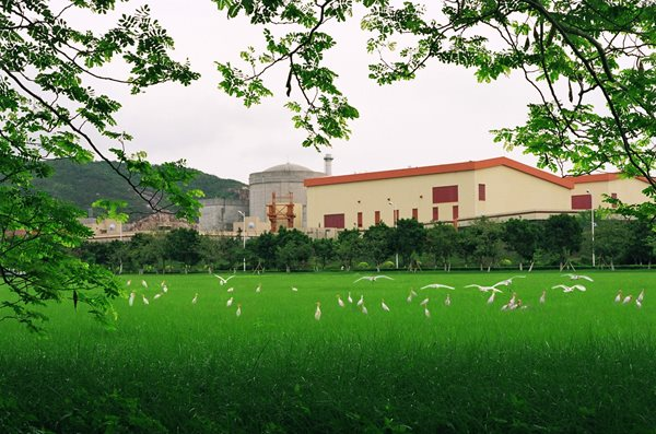 Daya Bay nuclear power plant with a flock of birds on the foreground