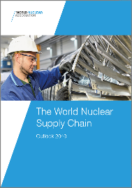 The World Nuclear Supply Chain: Outlook 2040 image