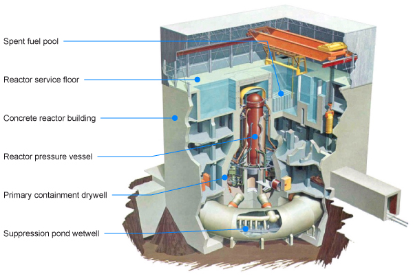 Inside of a GE BWR reactor of the sort at Fukushima Daiichi showing main components
