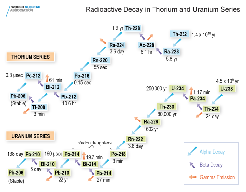 Radioactive Decay in Thorium and Uranium Series